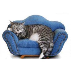 Нестандартная мебель